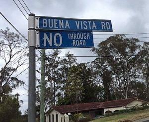 Buena Vista Road Winmalee Fresh Perspective Landscapes bushfires bush backyard6