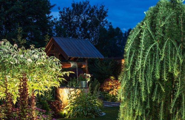 Outdoor Lighting Solutions to Transform Your Garden
