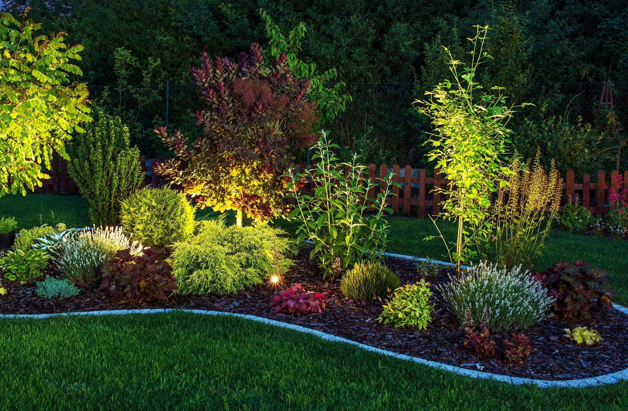 Outdoor Garden Lighting Ideas to Transform Your Garden