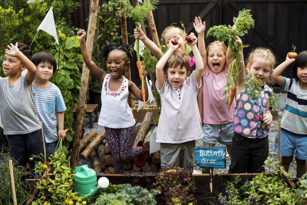 veggie-gardens-for-kids