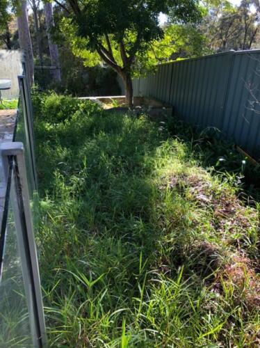 Glenbrook Before Landscaping