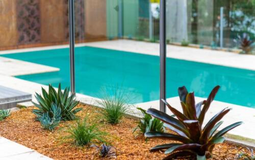 Pool and Gardens replanted