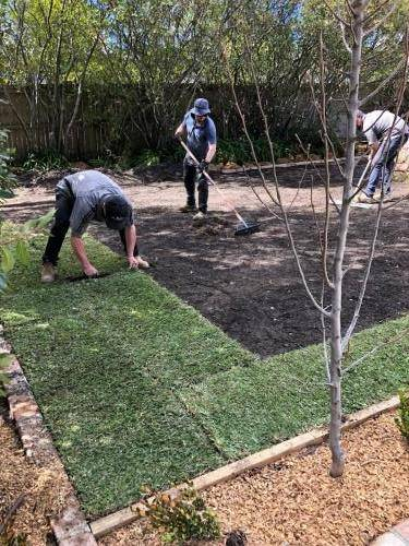 Fresh Perspective Landscapes Leura Blue Mountains Structural Landscaping Landscaper Turf Planting Quality 10
