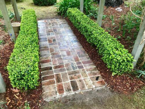 Fresh Perspective Landscapes Structural Landscaping Quality Blue Mountains Wentworth Falls Pathway Garden Edging Landscaper 9