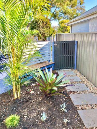 Garden Bed Palms and Paved Path Steppers