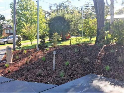 Glenbrook fresh perspective landscapes structural landscaping blue mountains landscape construction pergola timber planting 9