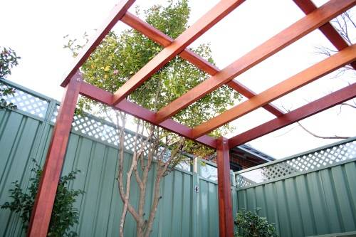 Timber Pergola, springwood, blue mountains landscape construction, fresh perspective landscapes
