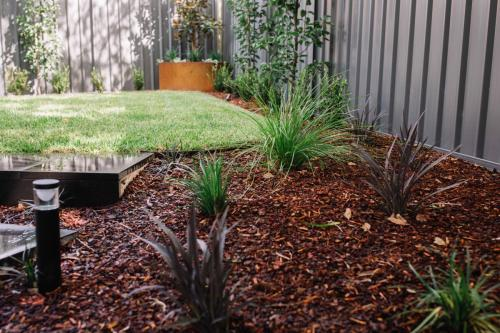 Wentworth Falls Native Plant Landscaping