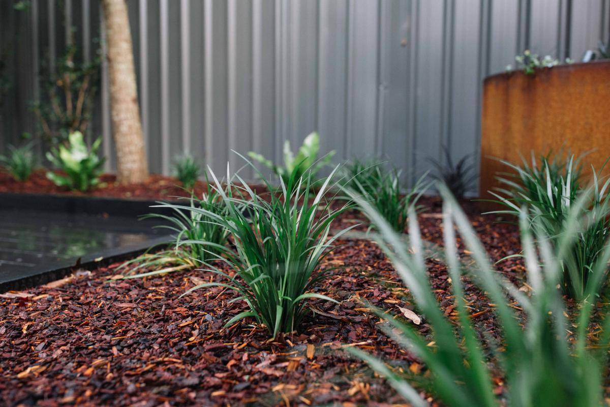 Easy care mulched garden beds