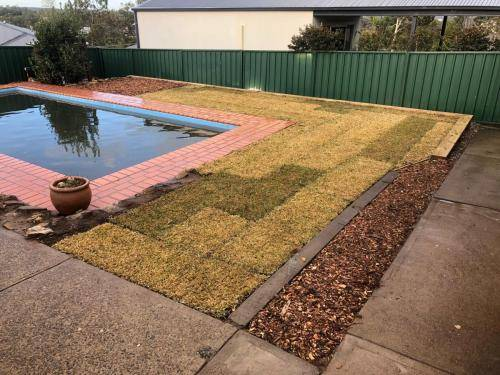 Winmalee fresh perspective landscapes structural landscaping blue mountains landscape construction excavation turf pathway retaining wall garden beds 5