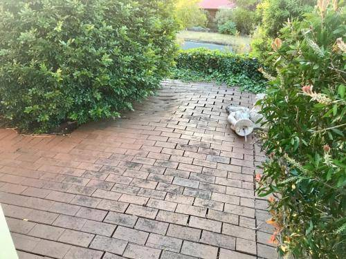 Winmalee retaining wall sloping block paving sandstone turf landscape construction blue mountains structural fresh perspective landscapes Winmalee 8